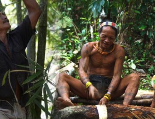 In Indonesia la gestione delle foreste va alle comunità indigene